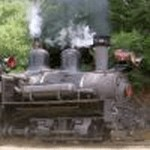 The Geared Locomotive or What Wood You Shay To?